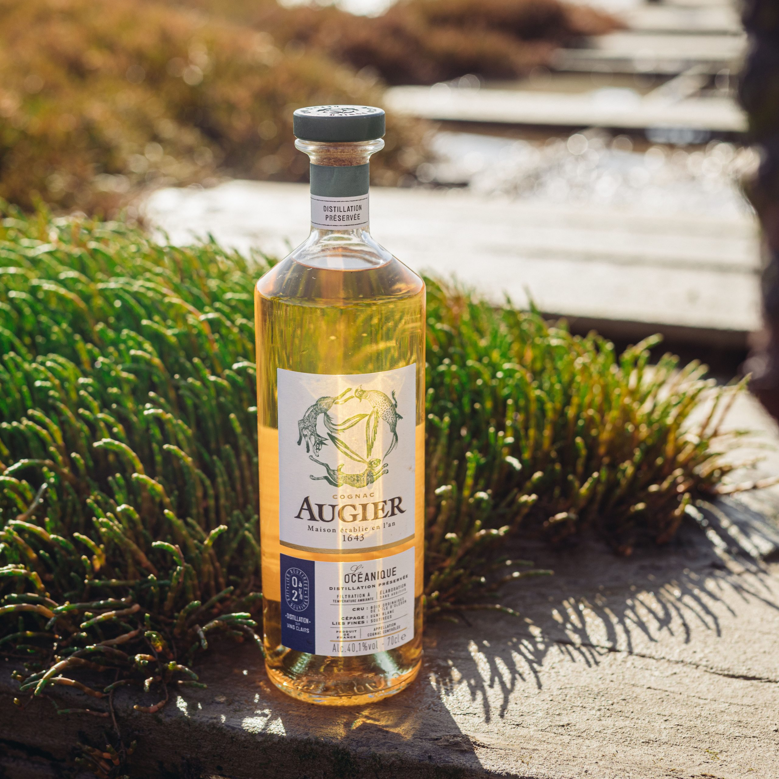Crafted-by-the-ocean-augier-cognac-4